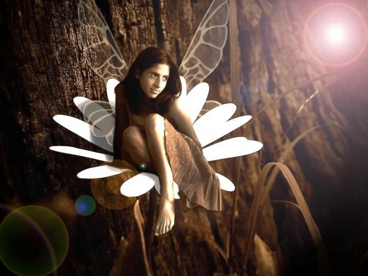 Fairy-Flower